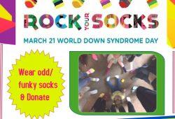 2021 poster for dsl rock your socks final (1)